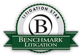 benchmark_litigation_2016